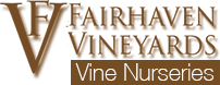 Fairhaven Vineyards Vine Nursery Logo